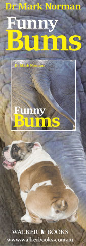 Funny Bums